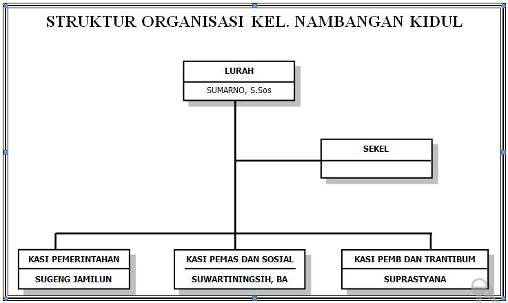 Struktur Organisasi Kel. Nambangan Kidul